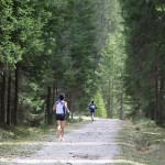 Cortina Dobbiaco 2015