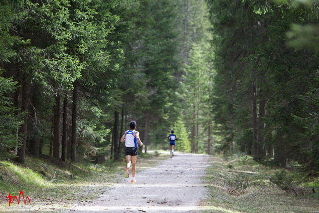 Cortina Dobbiaco 2015,  30 km spettacolari